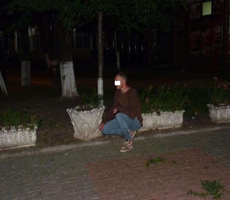 S-au distrat în miez de noapte distrugând florile de pe spațiul public! FOTO