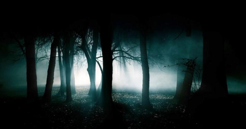 Salvați din pădure după ce au petrecut câteva momente romantice sub clar de lună!