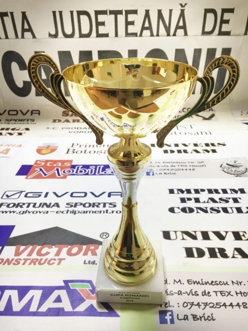 Sâmbătă se joacă finala CUPEI ROMANIEI - Faza Județeană, intre Luceafarul si Tudora!