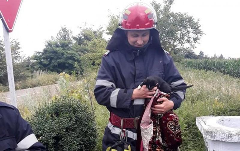 Săptămâna trecută: 117 misiuni de protejare a vieții pentru pompierii de la Botoșani