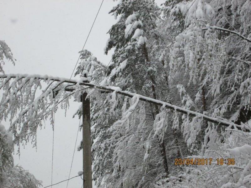 Şase localităţi din judeţul Botoşani, fără energie electrică!