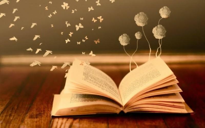 Scriitoare din Botoșani, protagonistă în derularea unui Incubator de lectură pentru copiii din Delta Dunării
