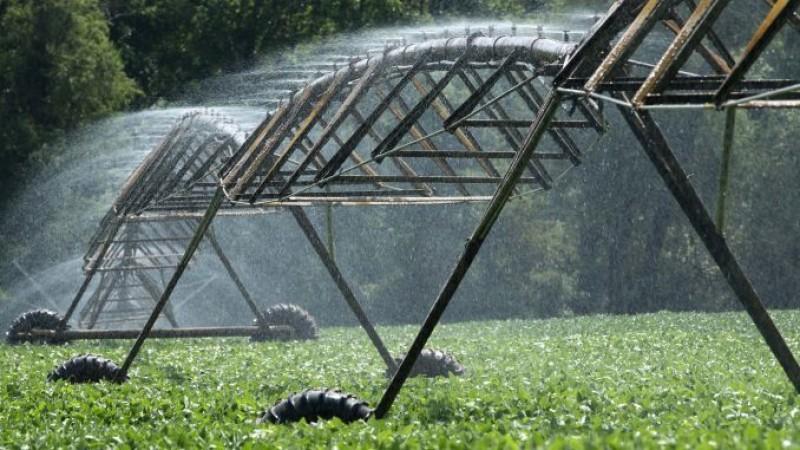 Senatorii au decis: Apă gratuită pentru agricultorii care irigă!