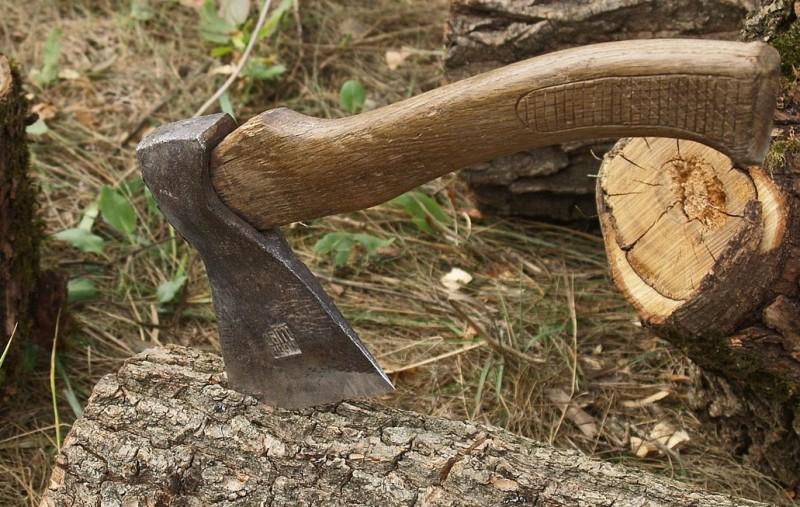 Accident în gospodărie, la doar 10 ani: Și-a dat cu toporul în cap, în încercarea de a face un arc!