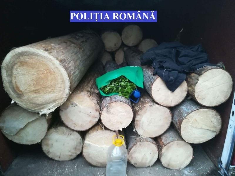 Și amendat, și cu lemnul confiscat, după ce a fost tras pe dreapta de polițiști!