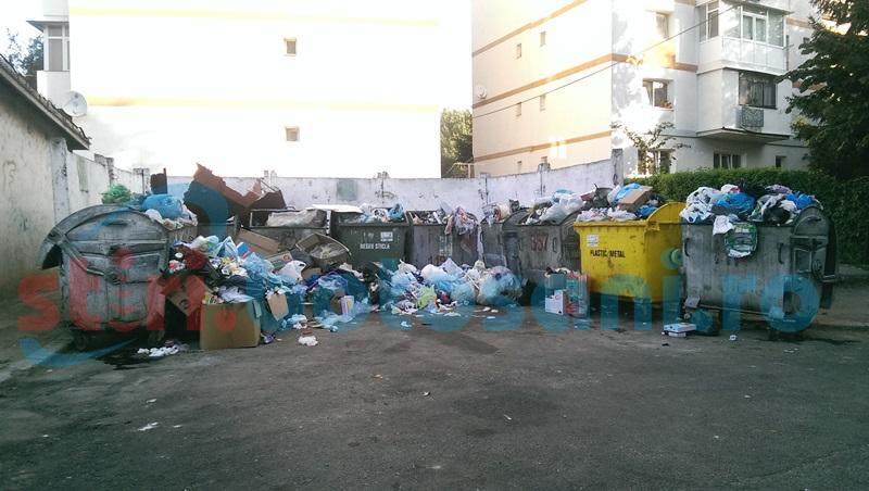 Solicitare pentru majorarea tarifului la gunoi!