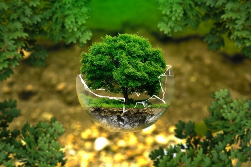 ȘTIAI ASTA? Românii plătesc 17 taxe pentru mediu. Gospodăriile contribuie la bugetul statului mai mult decât industria