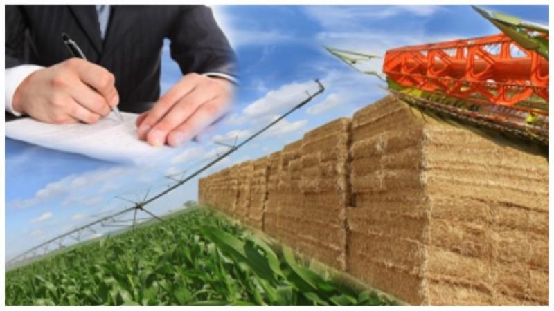 Succesiune gratuită: Ce documente trebuie să treceți în registrul agricol!