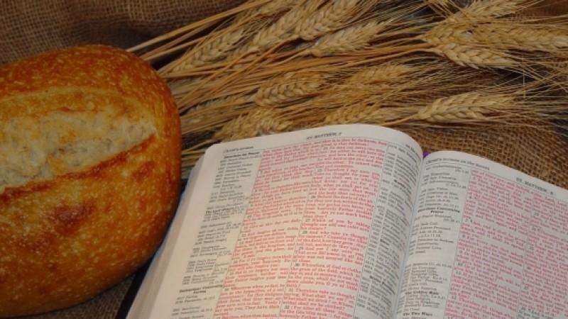 Superalimentele din Cartea Sfântă!