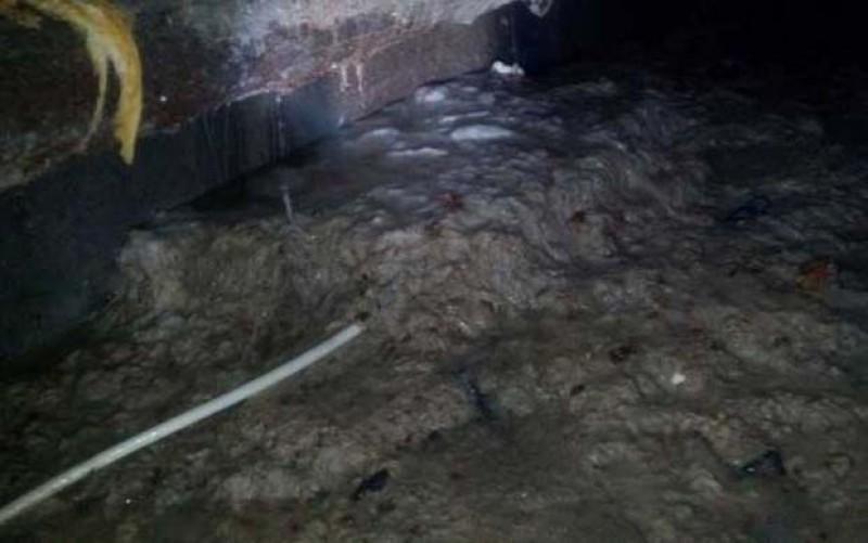 Suspect de leptospiroză trimis la Iași! Bărbatul lucrase într-un subsol la Botoșani!