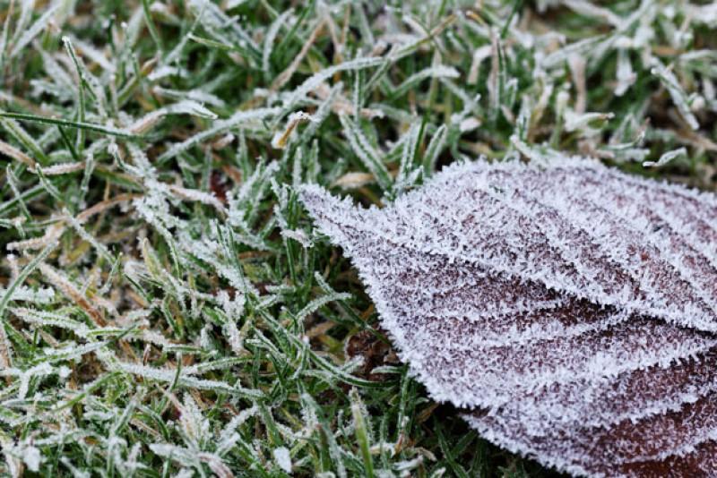 Temperatură apropiată de îngheţ, duminică dimineaţă, la Botoşani!