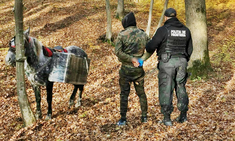 Cum se mai face contrabandă în județul Botoșani: cu calul! FOTO