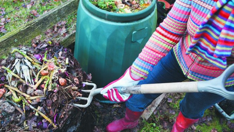 Toamna în grădină. Ce lucrări sunt obligatorii în luna octombrie