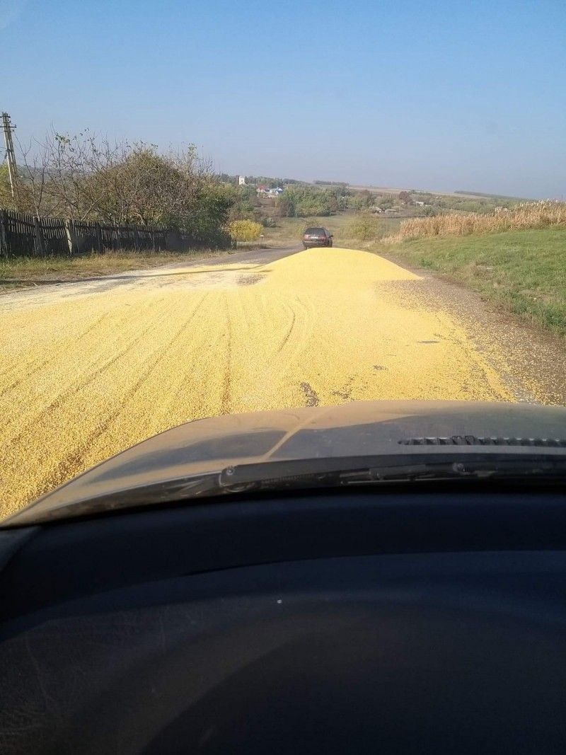 Trafic îngreunat pe un segment de drum din județ, după ce tone de cereale au acoperit carosabilul