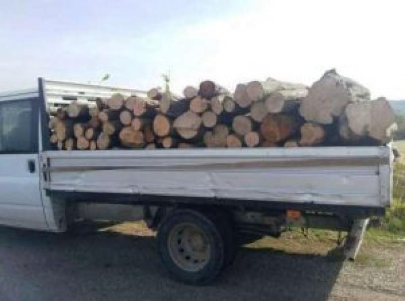 Transport ilegal de lemne confiscat de poliţiştii botoşăneni