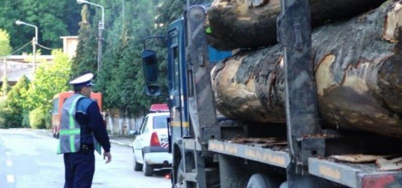 Transport ilegal de material lemnos depistat de polițiști!