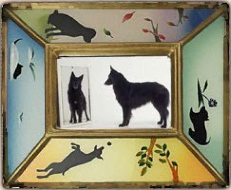 Tu ce vezi cand privesti in oglinda?