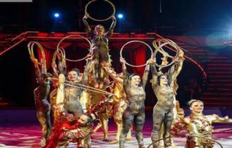 Un acrobat a cazut de la mare inaltime, in timpul unui spectacol la Circul Globus