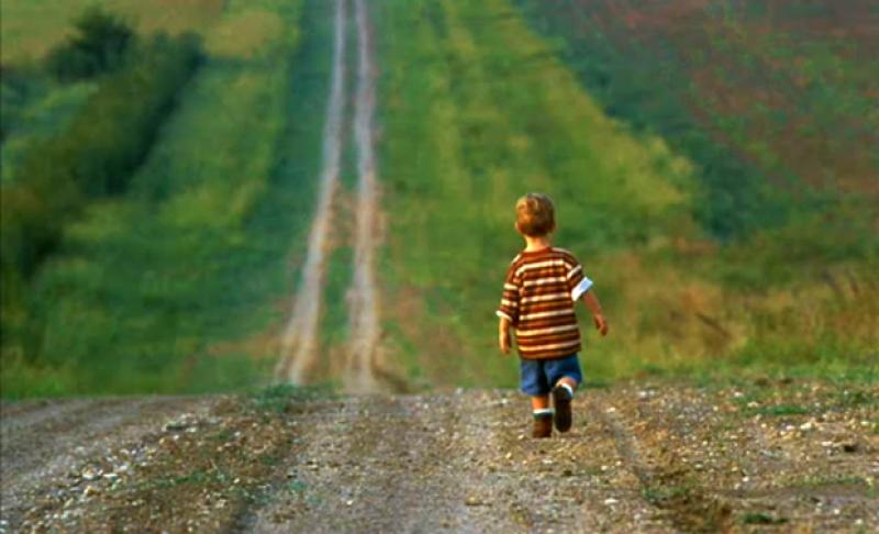 Un copil de 3 ani din Dorohoi, găsit singur pe un drum naţional, la 500 de metri de casă