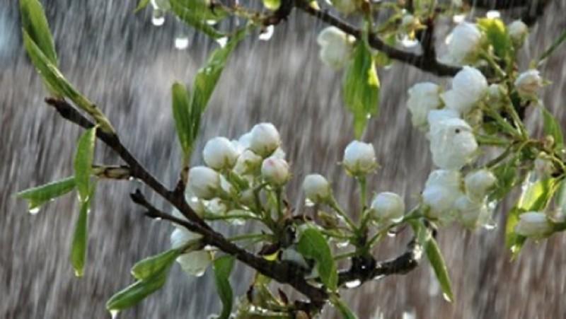 Un început de weekend cu frig și ploi!