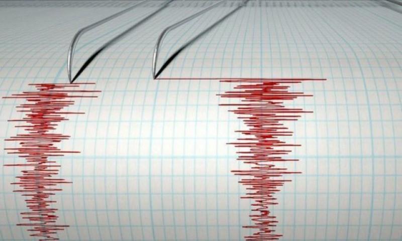 Un nou cutremur în această dimineață în zona Vrancea