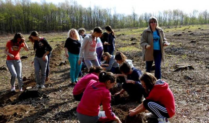 """Un nou proiect pentru elevii de la Botoșani: au început înscrierile pentru Programul Național de plantat păduri """"Pădurea Mea"""" ediția 2020"""