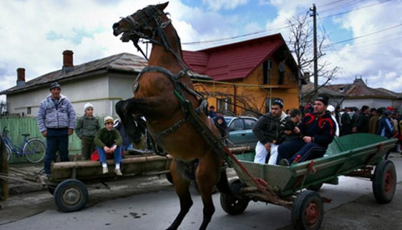Un tânăr a ajuns la spital grav rănit de un cal nărăvaș!