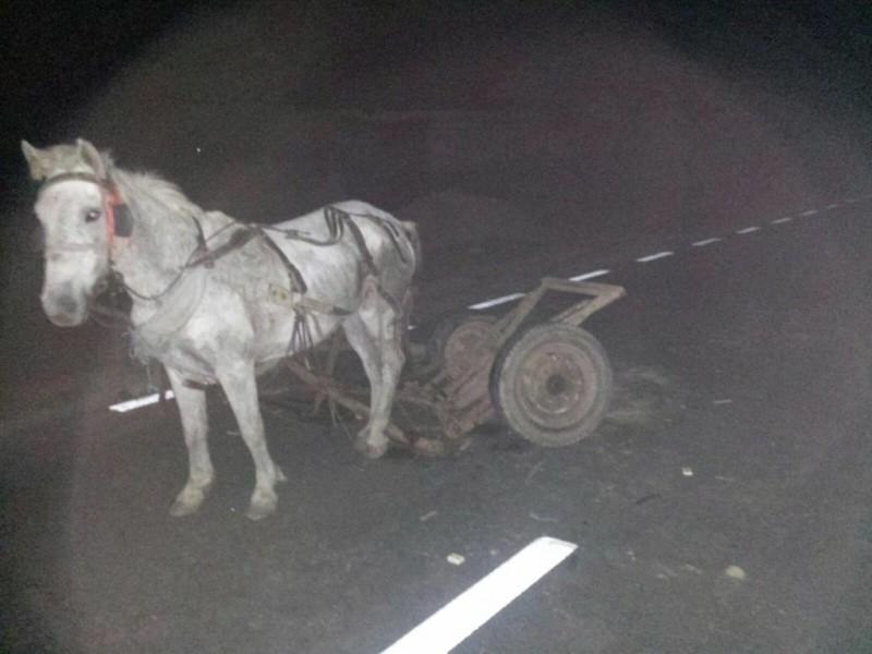 Un tânăr aruncat pe asfalt după un accident la Ungureni a fost transferat de urgenţă la Iaşi