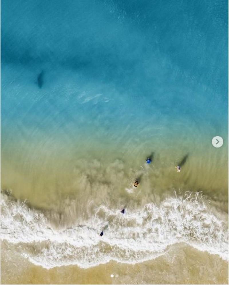 """Un tată a înălţat o dronă pentru a-şi fotografia copiii aflaţi pe plajă. La scurt timp după aceea a avut parte de un moment de infarct: """"A fost un moment de la Dumnezeu"""""""