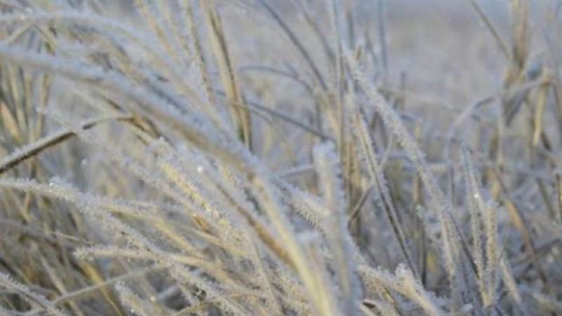 Un val de aer rece lovește întreaga țară. Cum va fi vremea în nordul Moldovei