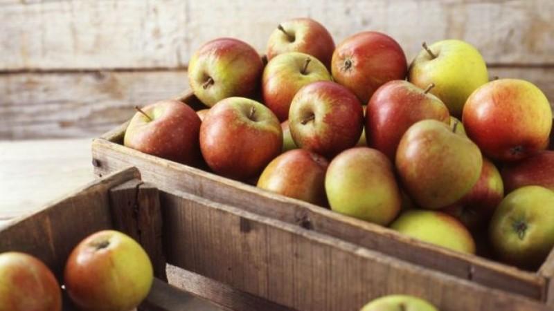 UTIL: Cum se păstrează merele peste iarnă?