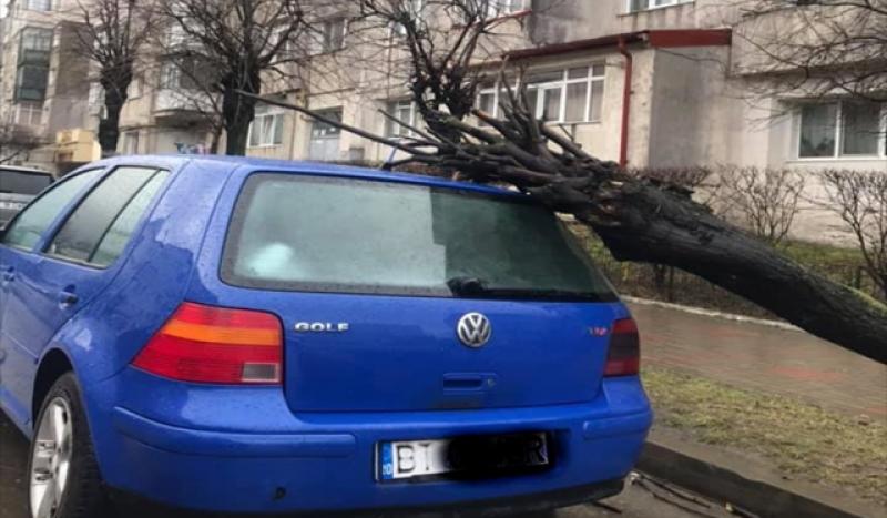 Vântul puternic a creat pagube în municipiul Botoșani