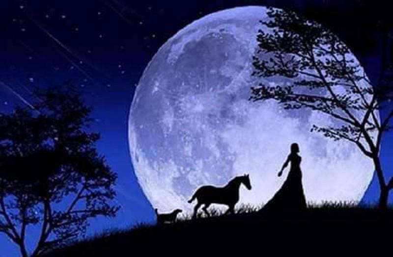 VERSURI DIN STRADĂ: Cântec cu lună plină. De Ciubotariu Mihaela