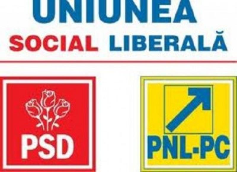 VEZI cum se vor imparti colegiile parlamentare in cadrul USL, la Botosani!