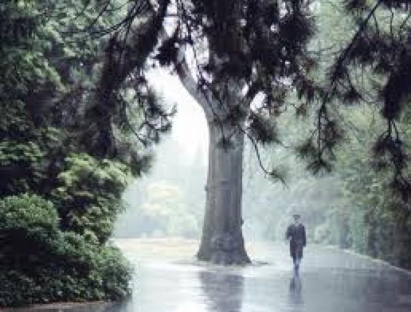 Viaţa nu înseamnă să supravieţuieşti unei furtuni, ci să ştii să dansezi în ploaie! VIDEO