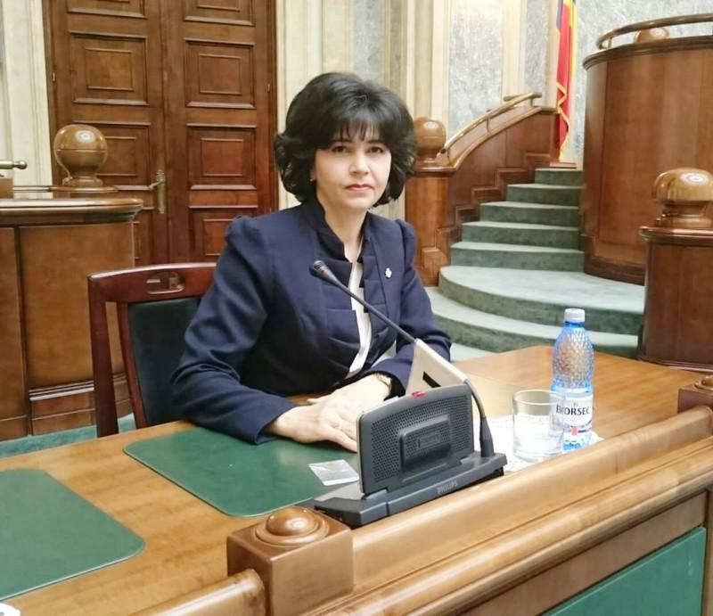 """Vicepreședintele PSD, Doina Federovici: """"Președintele încearcă să provoace o suspendare din partea majorității"""""""