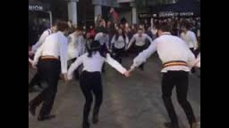 VIDEO emoționant! Studenții români au ridicat campusul Universității din Essex în picioare!