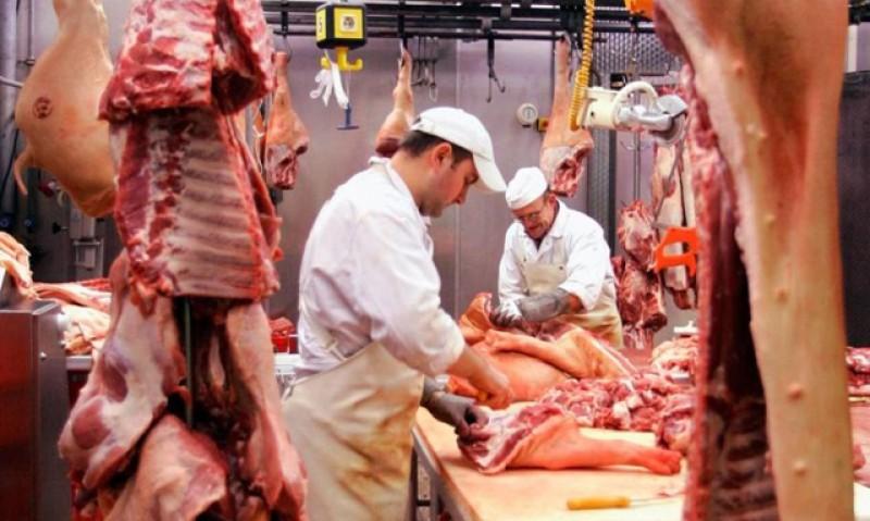 Vine scumpirea cărnii de porc! Pesta porcină africană a omorât 10% din efectivele României!