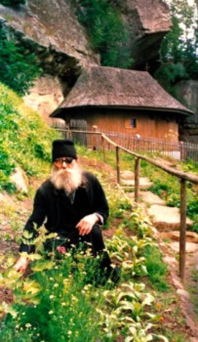 VORBA BUNĂ: Sfaturi de la Părintele Paisie Olaru