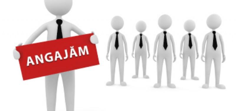 Vrei să muncești? Vezi cu ce ofertă vin în această săptămână angajatorii din Botoșani!
