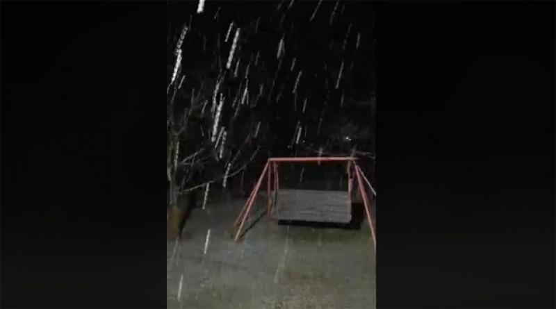 Vreme de iarnă în Botoșani. În nordul județului a început să ningă - VIDEO
