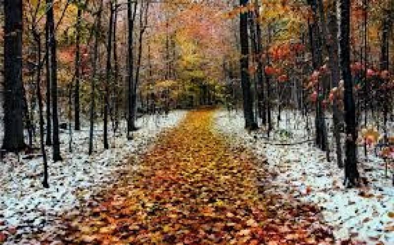 Vreme închisă și friguroasă, cu lapoviță și ninsoare. Câte grade se anunță marți la Botoșani!