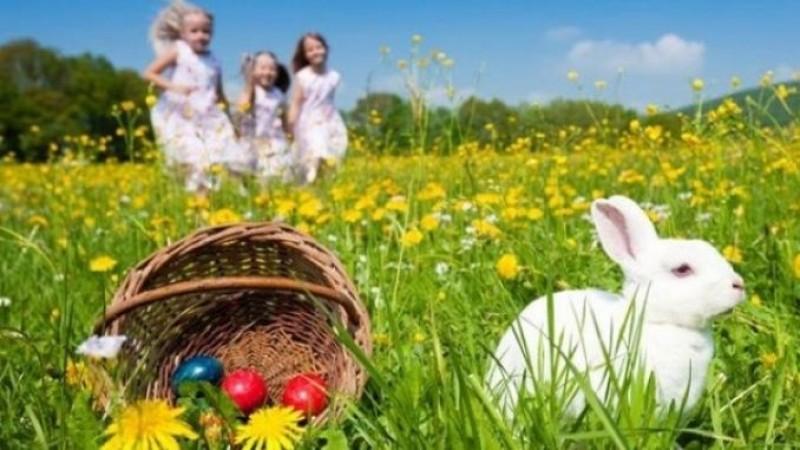 Vremea de Paști. Recomandările specialiștilor pentru fermieri