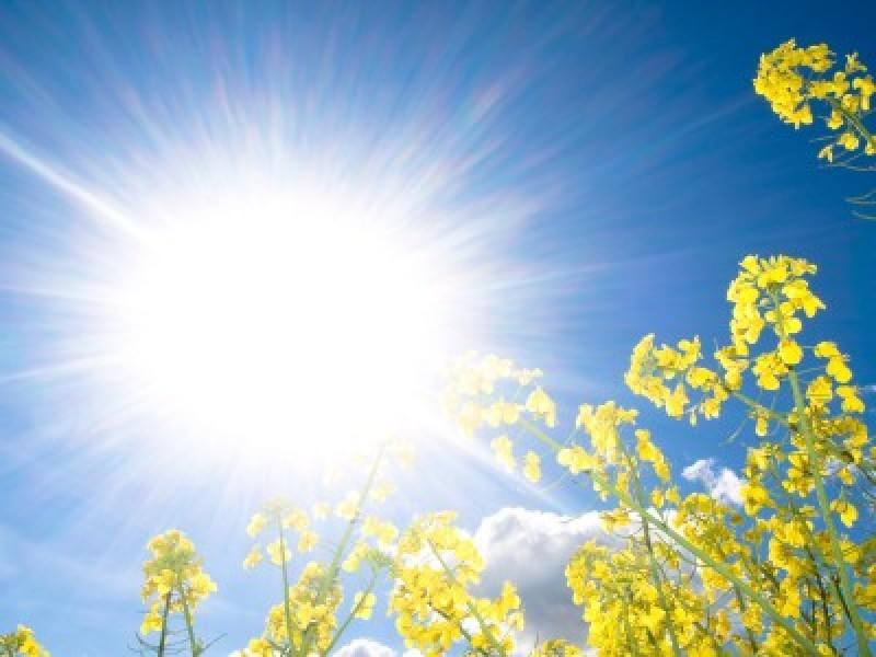 Weekend de vară, cu vreme caldă și averse în unele zone!