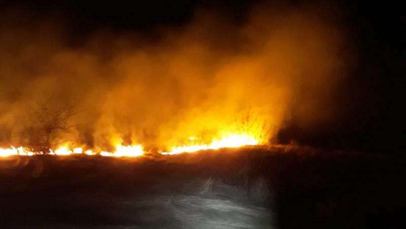 Zeci de hectare de teren pârjolite de flăcări
