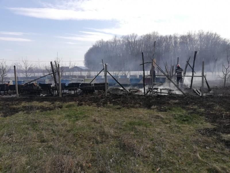 Zeci de stupi de albine făcuți scrum, în urma unui incendiu