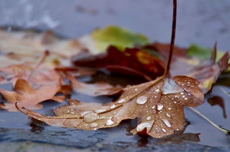 Zi cu ploaie, dar vremea rea nu ține mult. Iată cum va fi în weekend!