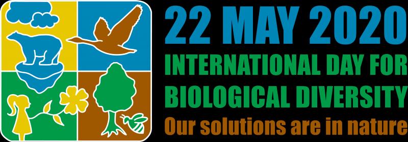 """Ziua Internațională a Diversității Biologice. Directorul APM Botoșani: """"Din nefericire, uităm deseori ce ne oferă natura"""""""